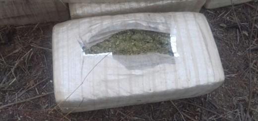 Militares aseguran 41 paquetes de marihuana en El Fuerte