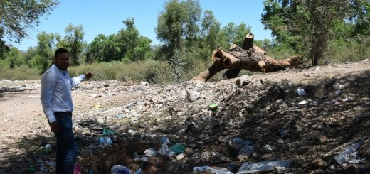 Atiende PROFEPA denuncia por supuesto ECOCIDIO en el río fuerte, municipio de Ahome, Sinaloa