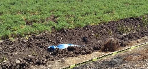 Muere arrollado vecino de la sindicatura El Tigre; el responsable se dio a la fuga