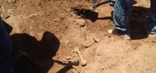 Osamenta es encontrada en el municipio de Sinaloa