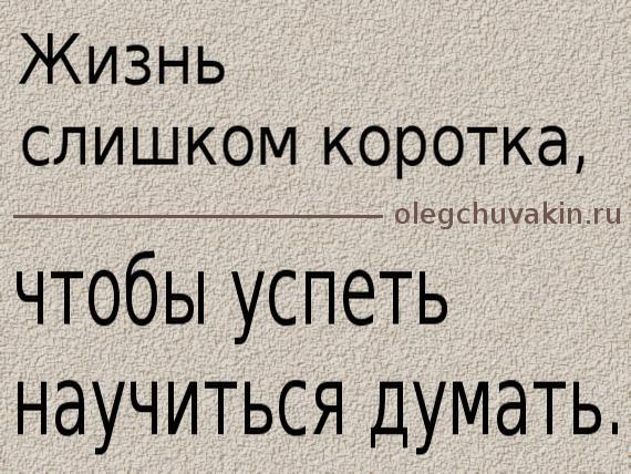 Жизнь коротка, думай, думать, Олег Чувакин