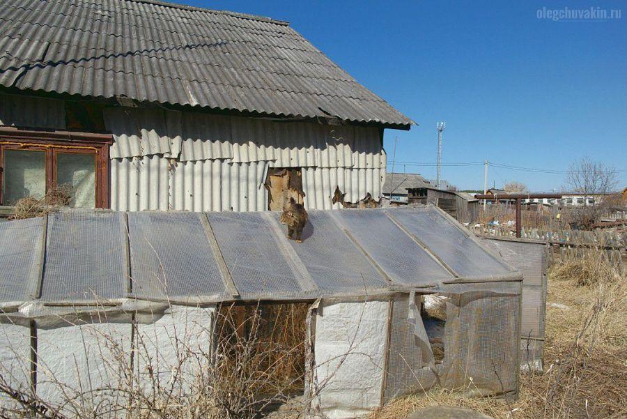 Деревня, Россия, вымирание, обнищание, бараки, фото