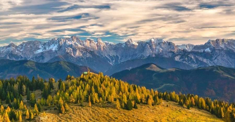 Горы, сосны, пейзаж, планета, фото, иллюстрация, фантастический рассказ