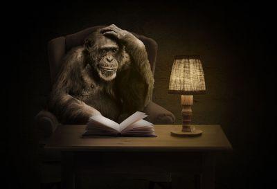 Обезьяна, рукопись, писатель, книга, лампа, за столом