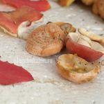 Рыжики, сыроежки, листья осины, фото, август