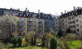 Marzo 2017, la primavera llega a mi balcón suizo