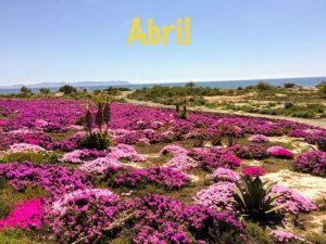 Abril, cosas que pasan en este mes