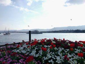 Atardecer de abril en el lago de Zurich