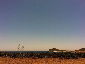 Parque natural de Cabo de Gata-Níjar, Almería en junio