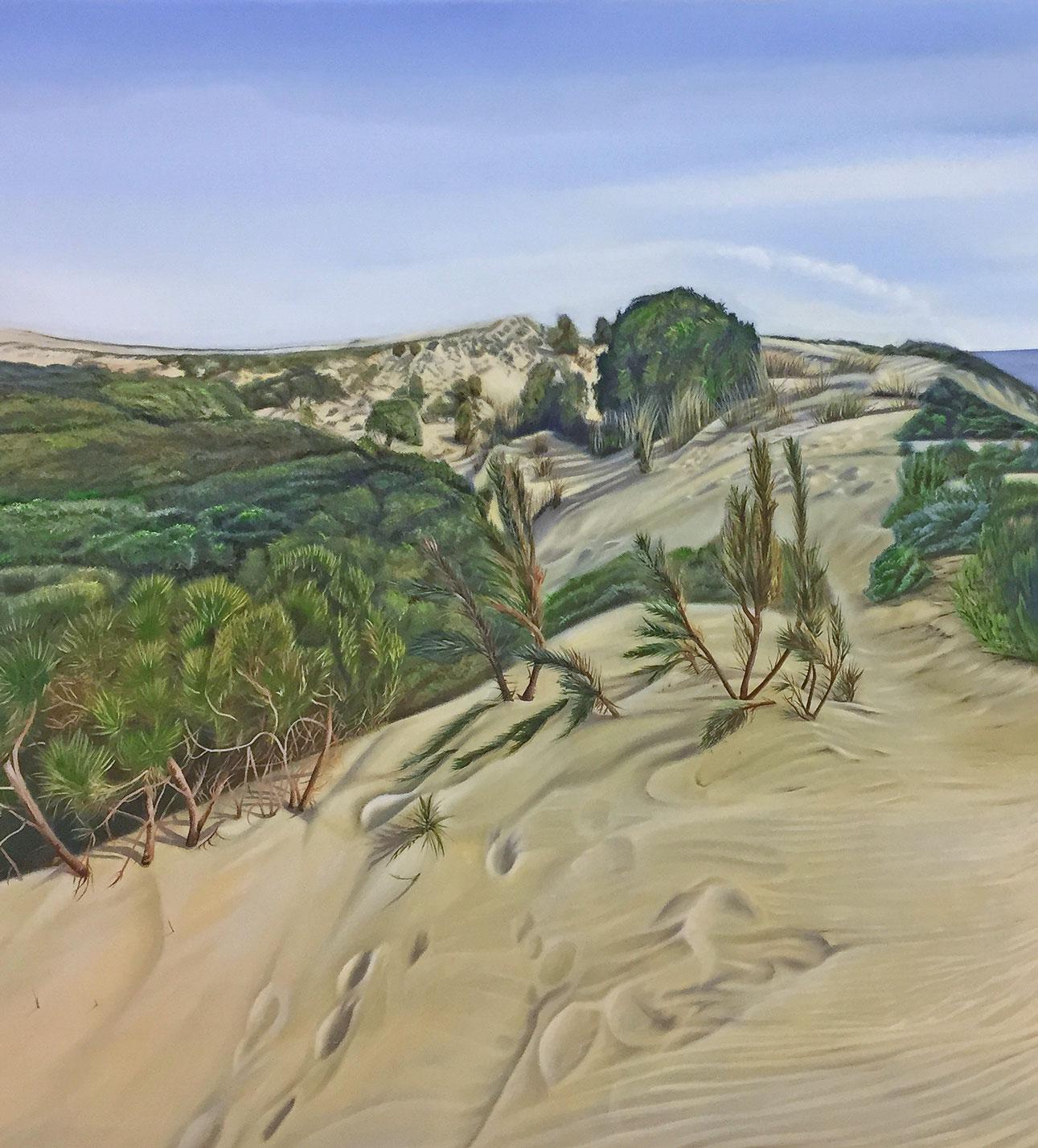 Dune and pine tree