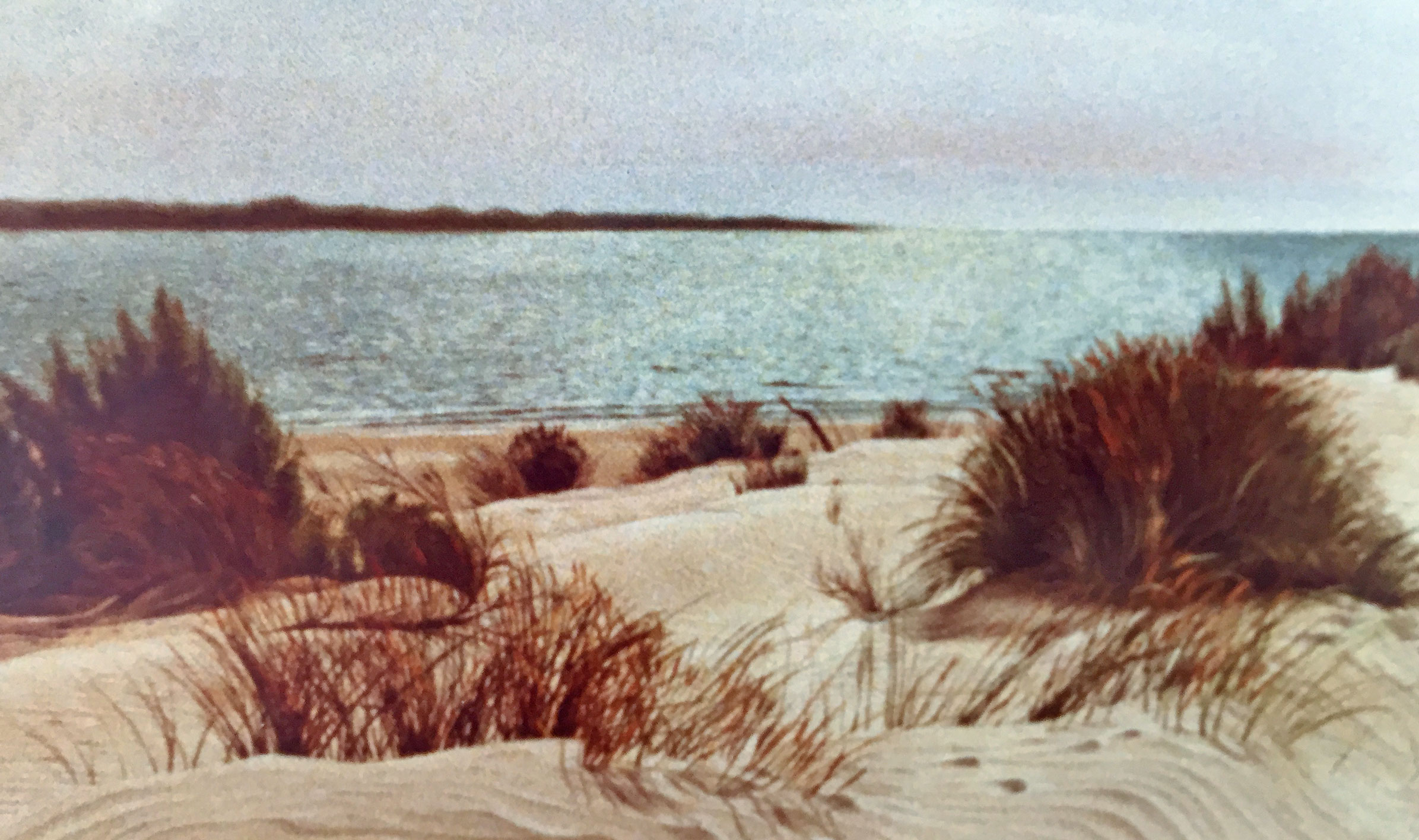Beach side of Sand Dunes in Coto Donana