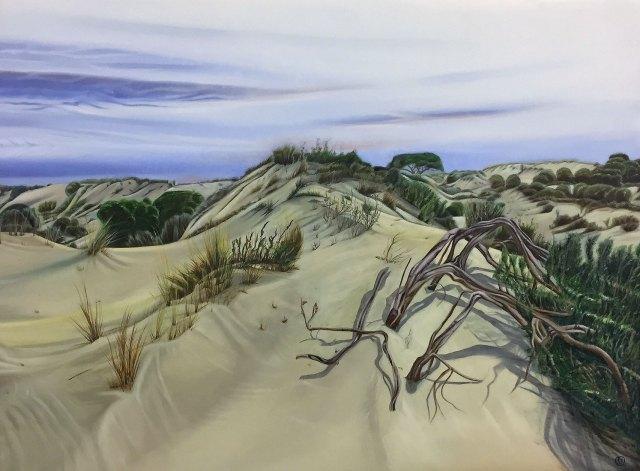 Sand Dunes in Coto Doñana