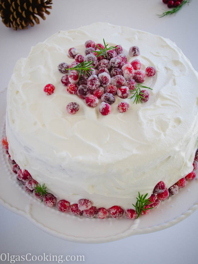 Chocolate Cranberry Cake