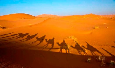 The-Sahara-is-the-worlds-largest-desert