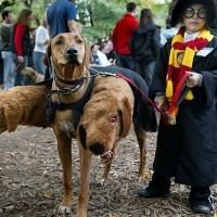Fantasias infantis para o Halloween