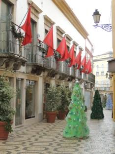 Christmas Trees in Faro