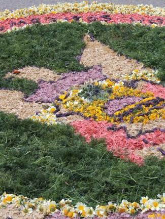 Carpet in close up