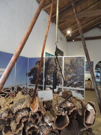 Cork exhibit