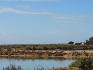 Saltpans in sunshine