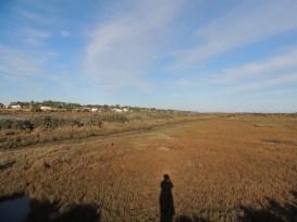 Looking back towards Pinheiro