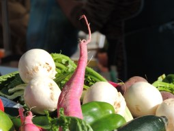 More turnips, and I think radish