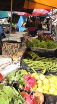 produtos-da-nossa-horta-stall