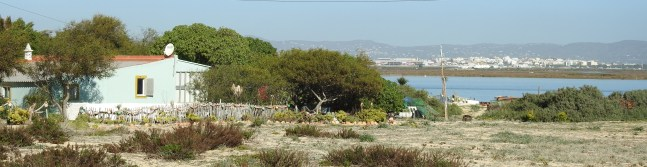 Living in the Ria Formosa
