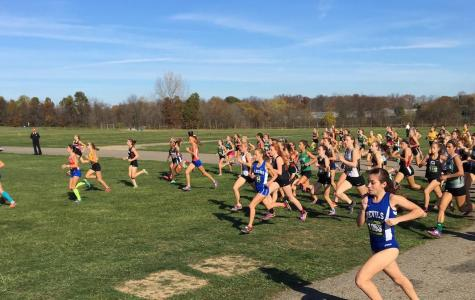 Cross country races to the top in state championship