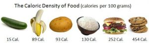 kalori makanan