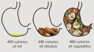 makanan diet 2