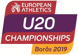 boras - Robert Breahnă la Campionatele Europene
