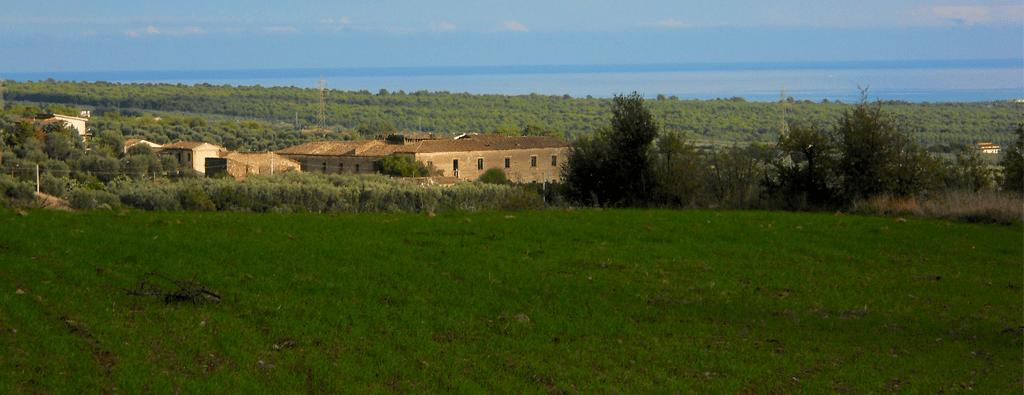 Olio Arcaverde - Azienda Agricola Arcaverde