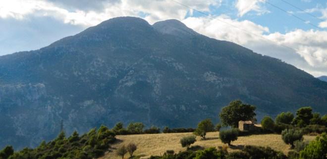 Monte Sellaro - Azienda Agricola Arcaverde