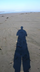 shadow on moonstone beach