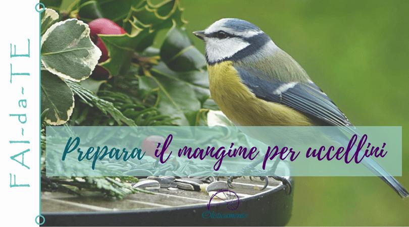 Fai da te: palline di grasso e semi fai-da-te per uccellini
