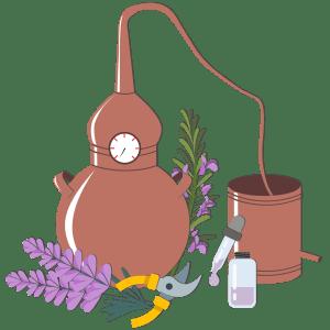 tareas aromaticas