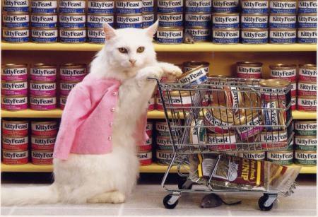 """""""Elle a fait ses courses"""""""