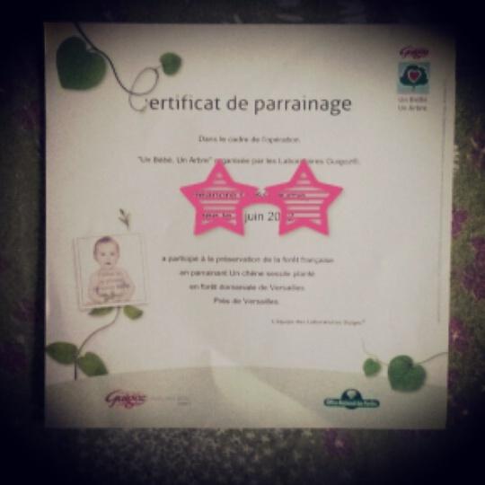 Le premier certificat de Crevette
