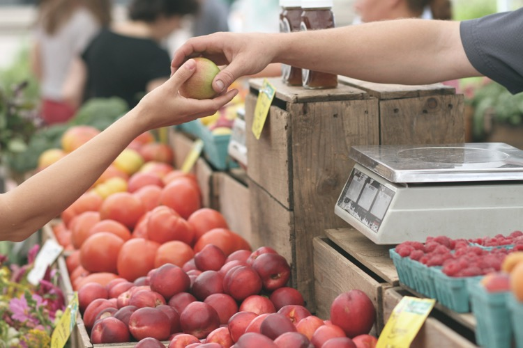 étal de fruits bio sur un marché