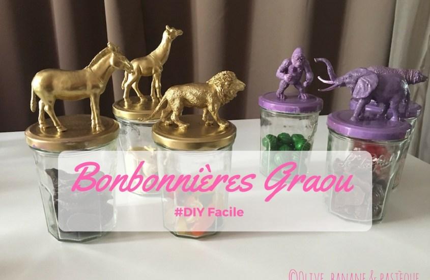 Mes bonbonnières Graouuu #DIY #monmagasingeneral