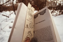 game of thrones, GOT, feast for crows, books, bookmarks, winter, snow, reading