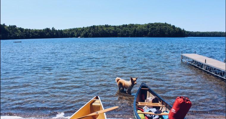 Massassauga Canoe Trip Summer 2017