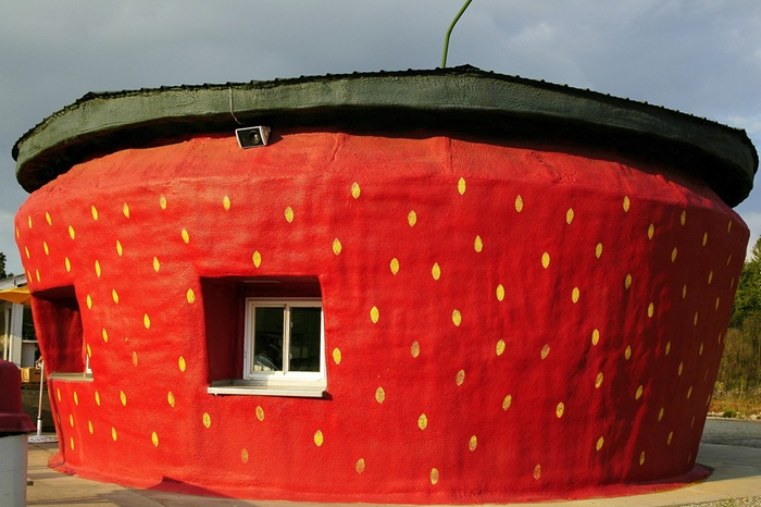 strawberry-ice-cream-shop-nc-usa-main9