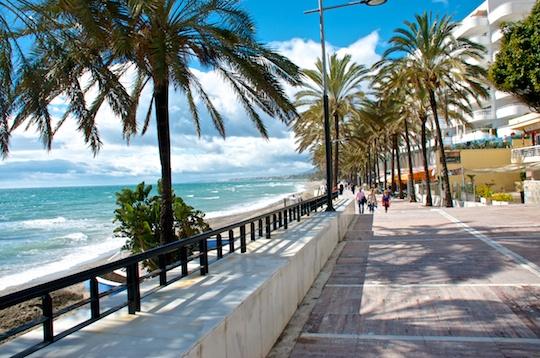 Spain Marbella And Puerto Baus Olive Oil And Lemons Dina Honke