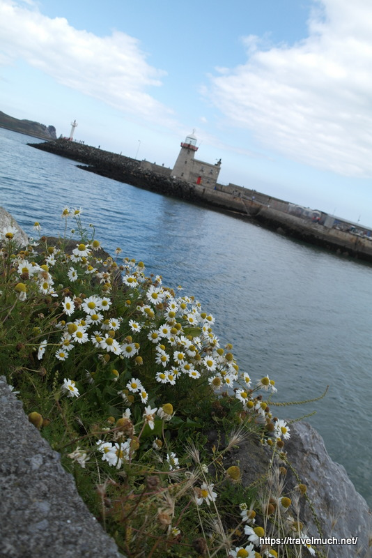 gorgeous Howth Harbour Lighthouse