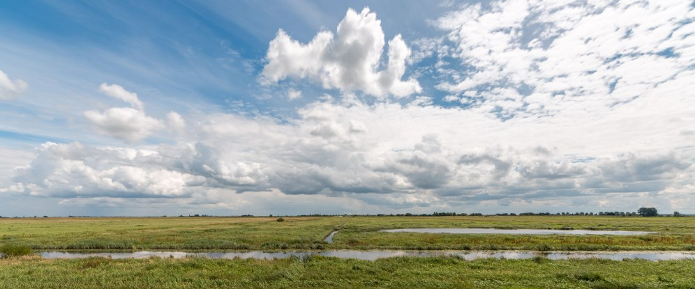 Old Bedford river and the flood plain of the Ouse Washes. Quite dry at this time of year. Photos from RSPB Ouse Washes on July 13th 2016.