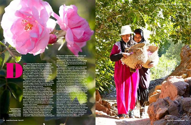 morocco-roses-mgouna-valley