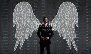Frustrations of an Angel Investor - Introduction