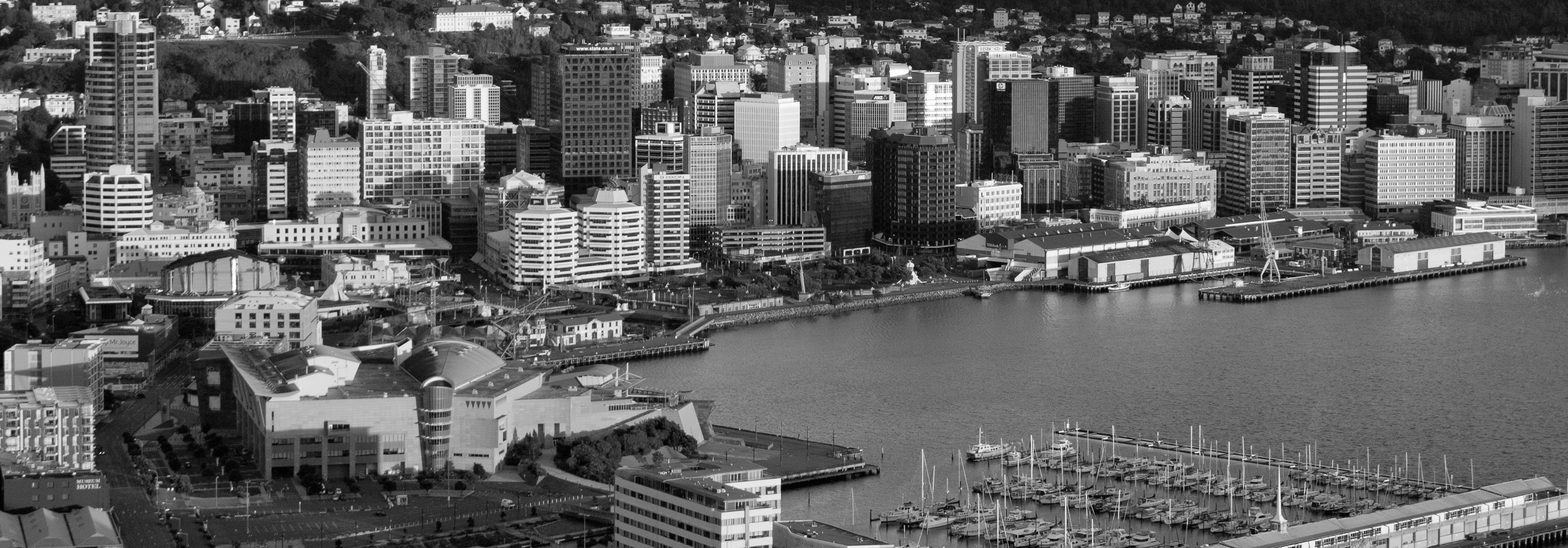 wellington-bw2