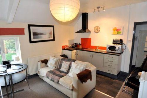 Olive Tree Apartment 2